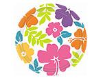 Hibiscus 7