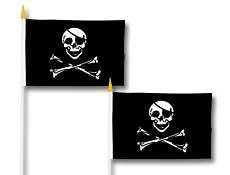 Pirate Flag 4 inchX 6 inch