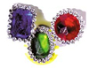 Large Jewel Ring Assorted