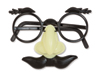 Funny Face Disguise Glasses