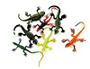 3 inch Painted Lizards-Assorted