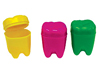 "1.25"" Rainbow Tooth Holders"