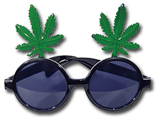 Fern Glasses