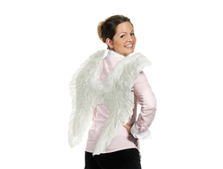WP1374 - Angel Wings