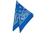 22 inch Royal Blue Bandanas